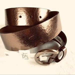 Wide Metallic Bronze Belt Gold LOFT Medium